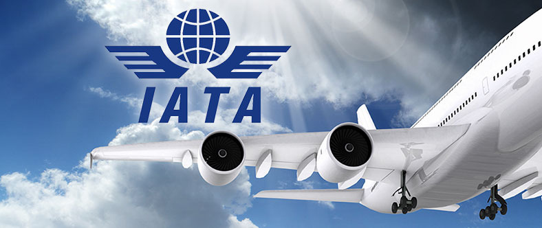 IATA Consultant Level II Course